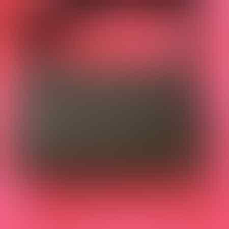 braun-buffel-original-vision-mobile-case-bag-wallet-clutch