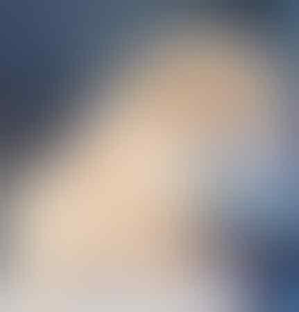 puppies-chow-chow-jantan-3-bulan-bigbone