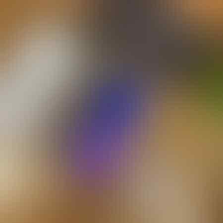 samsung-note-20-ultra-256gb-mystic-white-garansi-resmi-sein
