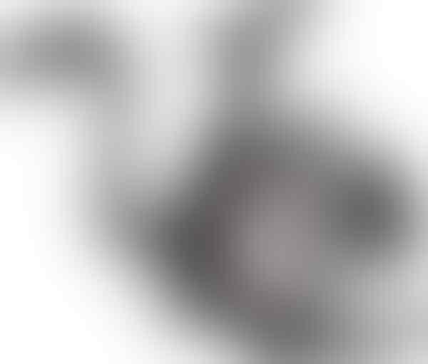 WTS Reel Pancing FX 4000 FB Shimano