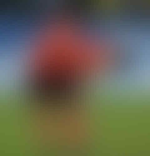 Adegan-adegan Mesum dalam Sepak Bola (18+)