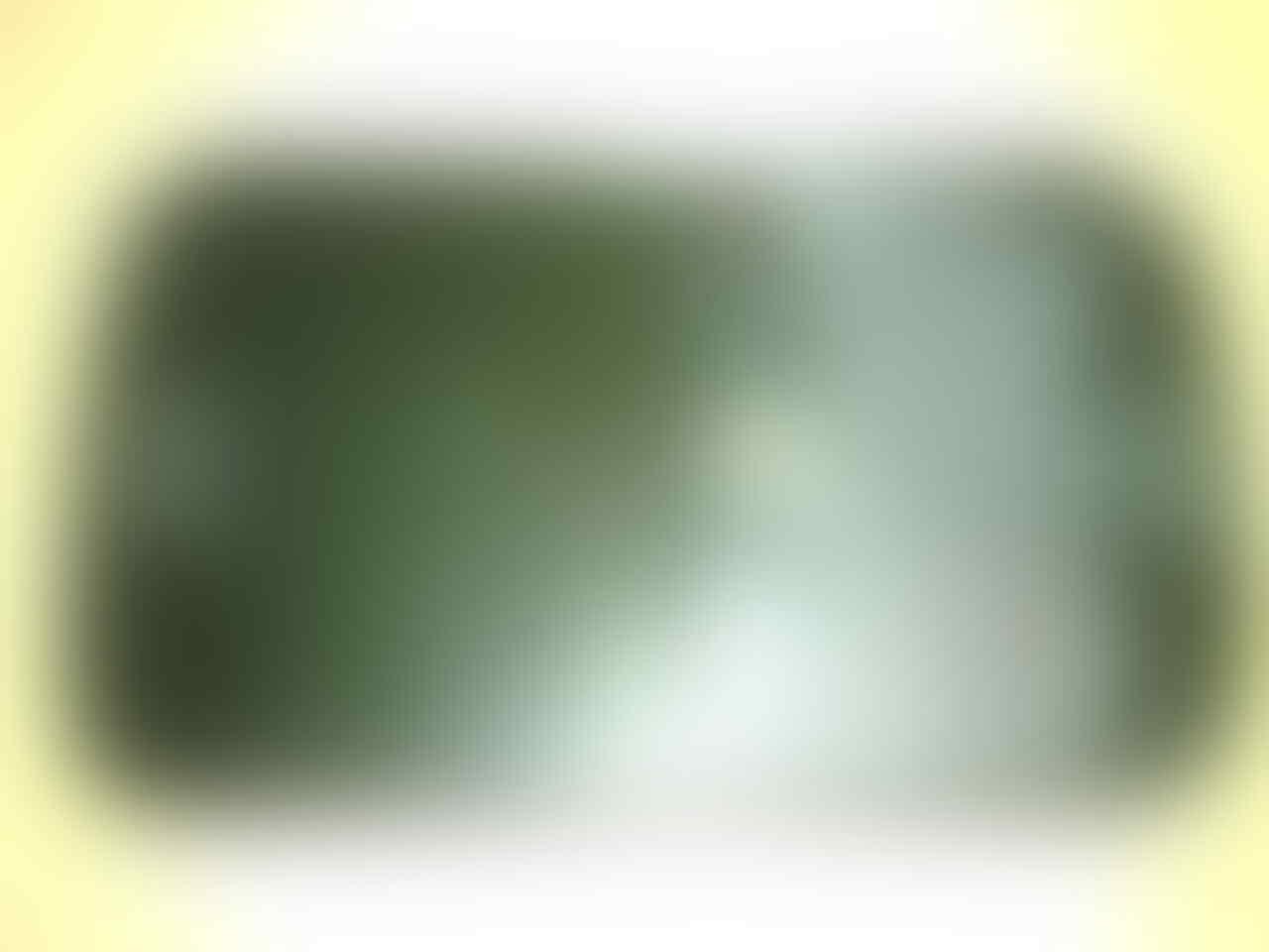 Blackberry Bold 9000 ROGERS RARE Canada1 MULUSSSS