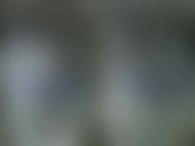 BB Air Softgun Merk Eclipse USA extreme precision
