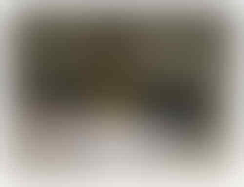 Lem Bulu Mata, Remover,Mascara DLL(ELISE, JUNIES, RUBOTAN, EYEPUTTI APAU, ELOV, DLL)