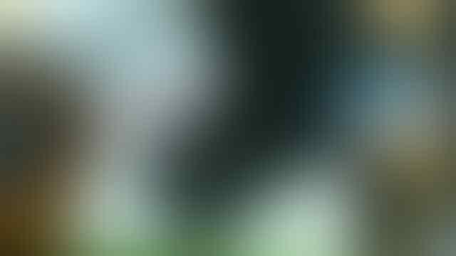 XPERIA NEO MT15I 2JT, M1 ANDRO X5 3G (LY-F8HD/Elijah M71G/Aoson M71G) 1.9JT PEKANBARU