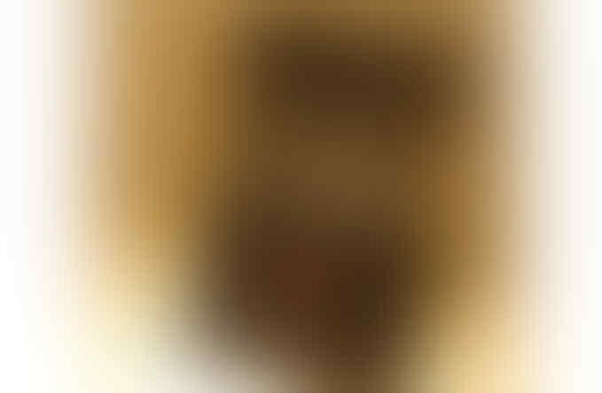 EARPHONE BASSHEAD COGOO T 02, DAN EARPHONE ALLROUNDER CUBE F1