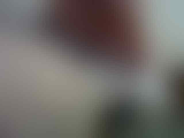 WTS LG Optimus L7 White+pen stylus (Jakbar)