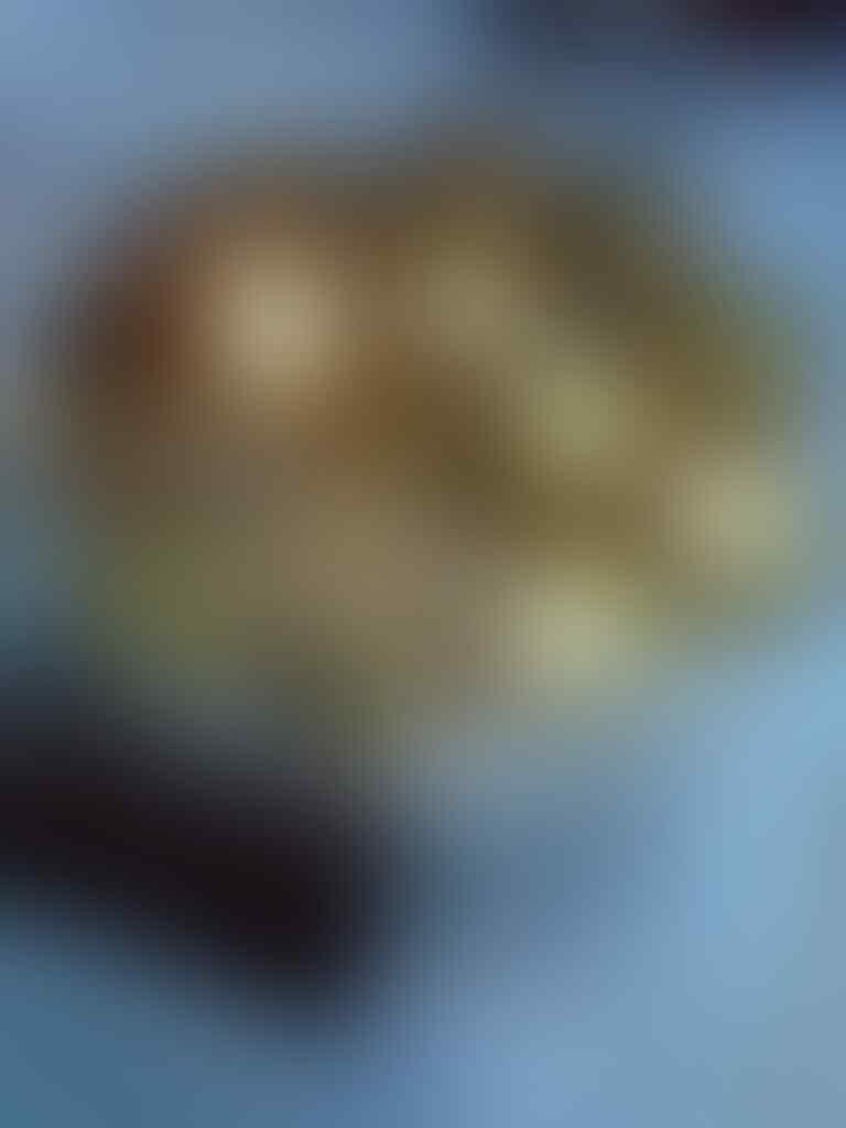 (WTS) Coklat rasa original atau isian