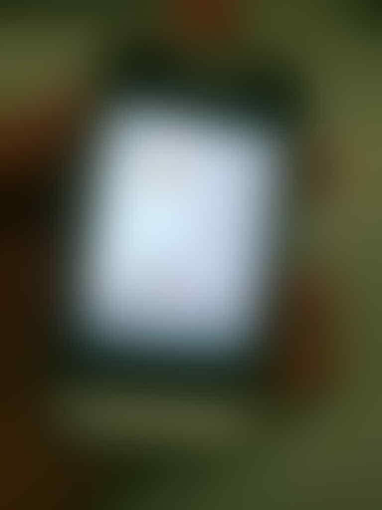 Jual Samsung Champ Duos GT-2652W Wifi