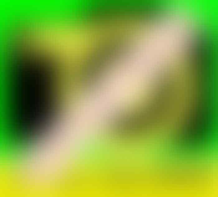 [LAPAK ADE2010] Lensa Canon 18-200 IS, Mulus, Garansi s/d Mei 13, Bisa di TT