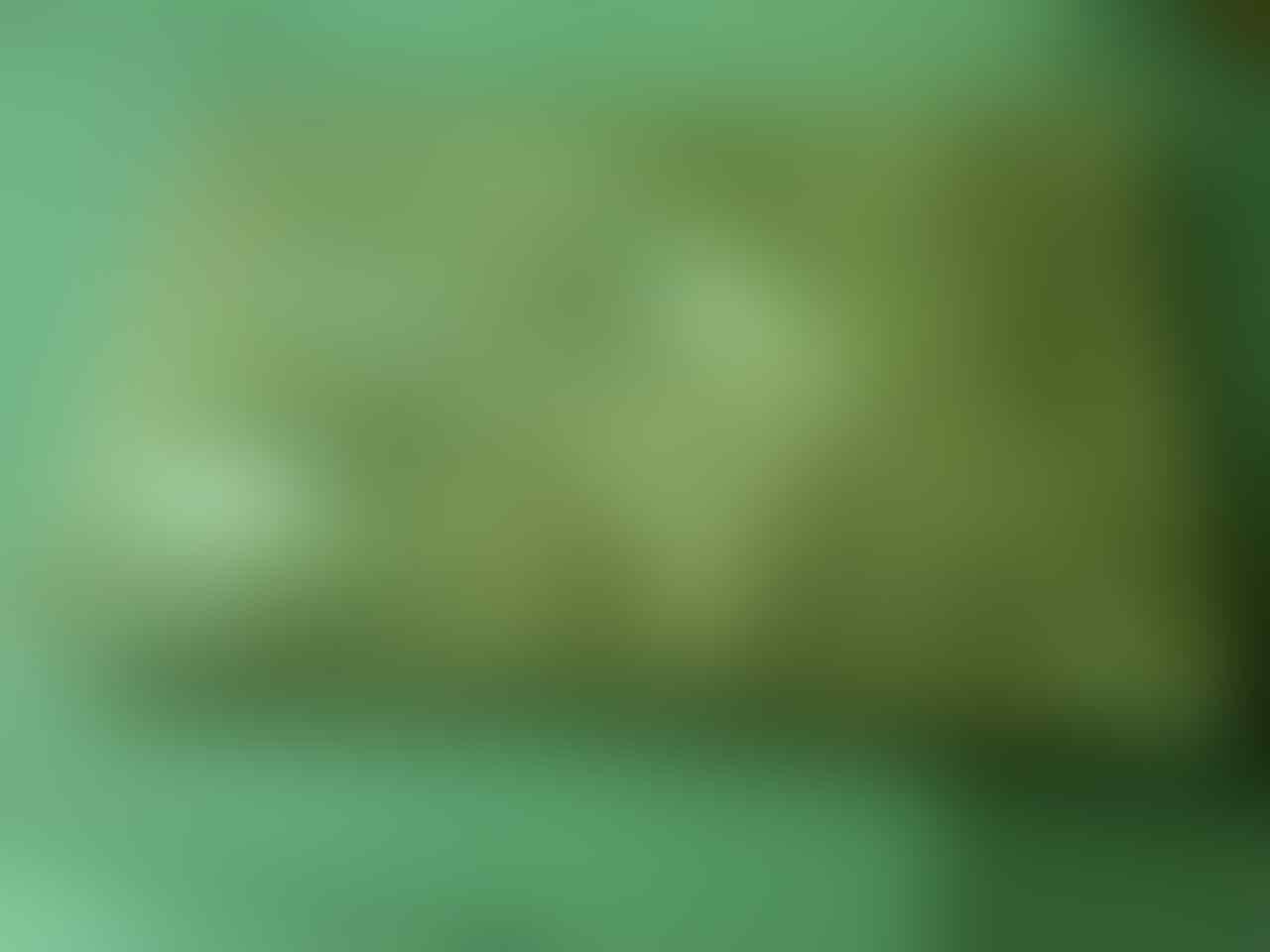 ▄▀▄PRE ORDER JERSEY GRADE ORI TERMURAH Rp 80.000 ! KUALITAS 100% GRADE ORI ! ▄▀▄