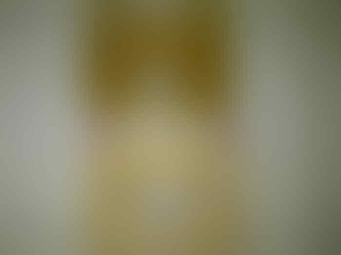 Jual : Collection (Rilakuma-Domo-Stich)