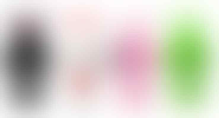 ~~~*** JUST iNCase ***~~~ ALL KOREAN iPhone CASE MODEL! RAREE!! SPECIALIST iPHONE4!!