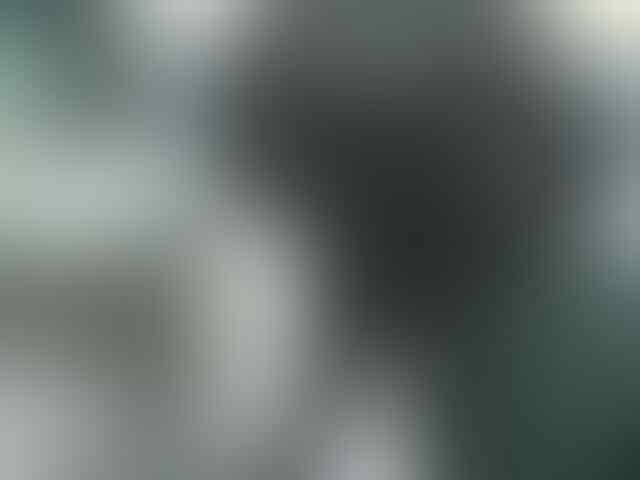 [PO Kloter 7] Jaket Kaskus dan [PO Kloter 5] Sweater Hoodie Kaskus + Sticker kaskus