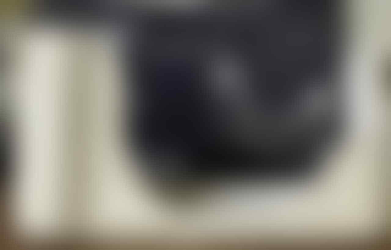 Lensa LUMIX G 14-45mm muyuusss & leather body case LUMIX GF1