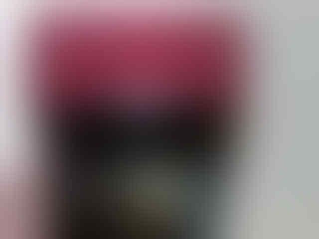 BLACKBERRY MONACO 9850 EKS TAM NORMAL 100%