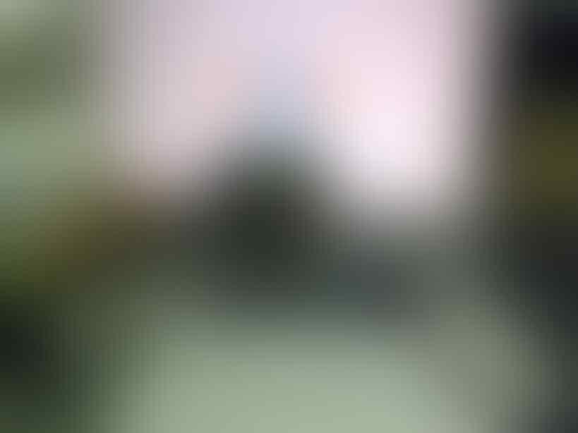 BB Torch 9810 White Second Garansi masih Garansi +/- 16 Bulan