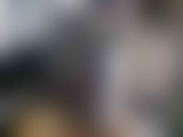 BLACKBERRY ARIES 8530 cdma baru GARANSI 2 tahun