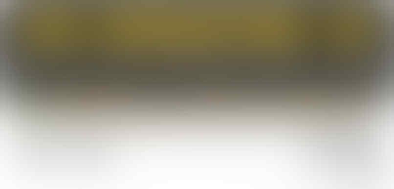 Carnivor, Nitrotech, Serious mass, Whey Gold on standard, harga kaki 5