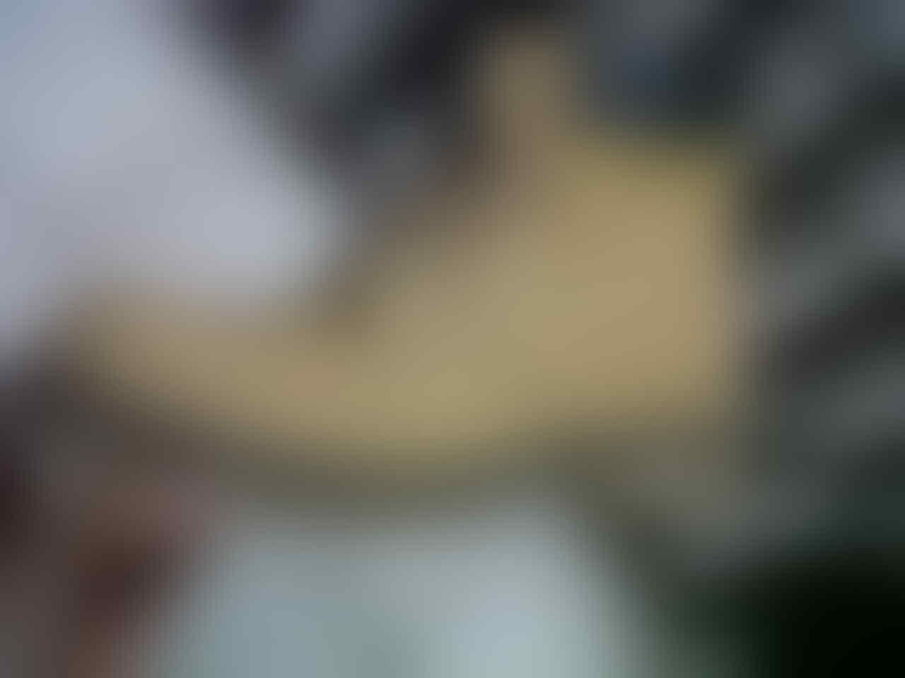 Sepatu Caterpillar/Caterboot muraahhhh
