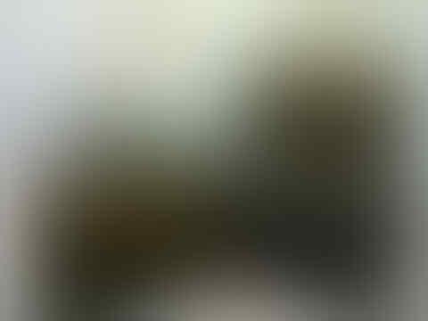 TAS DAN DOMPET BRANDED HIGH QUALITY HARGA LEBIH MURRAAHH!!! ~LOUIS VUITTON (LV)~