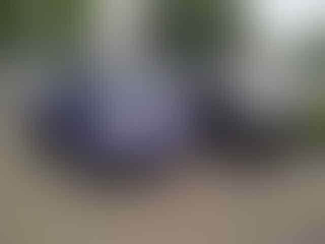 DI JUAL SUZUKI PICK UP & MEGA CARRY+EXTRA.. DP 5 JT AN..