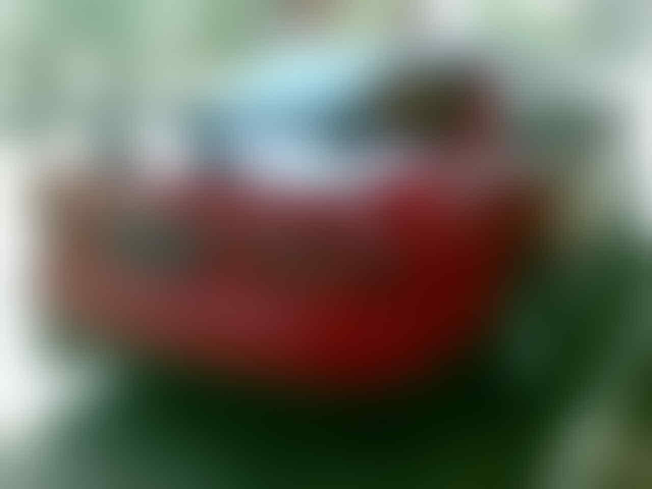 Mitsubishi Galant VR 95
