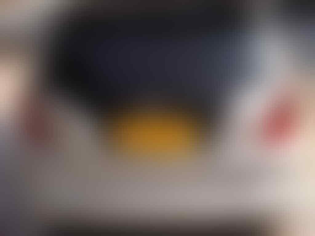 HONDA ALL NEW JAZZ RS AT 2009 SILVER METALIK