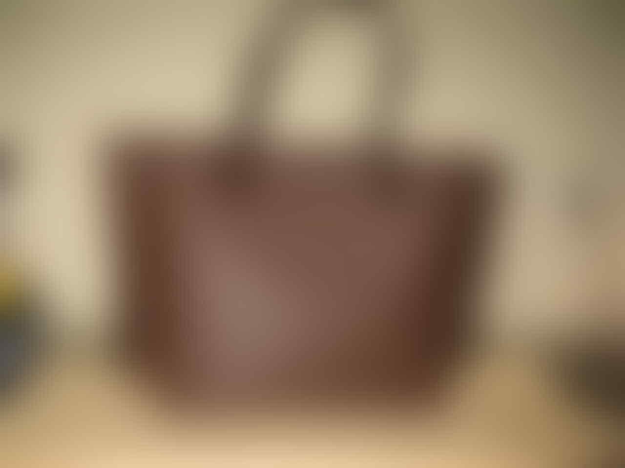 Tas Louis Vuitton Neverfull Damier MM (Brand New)