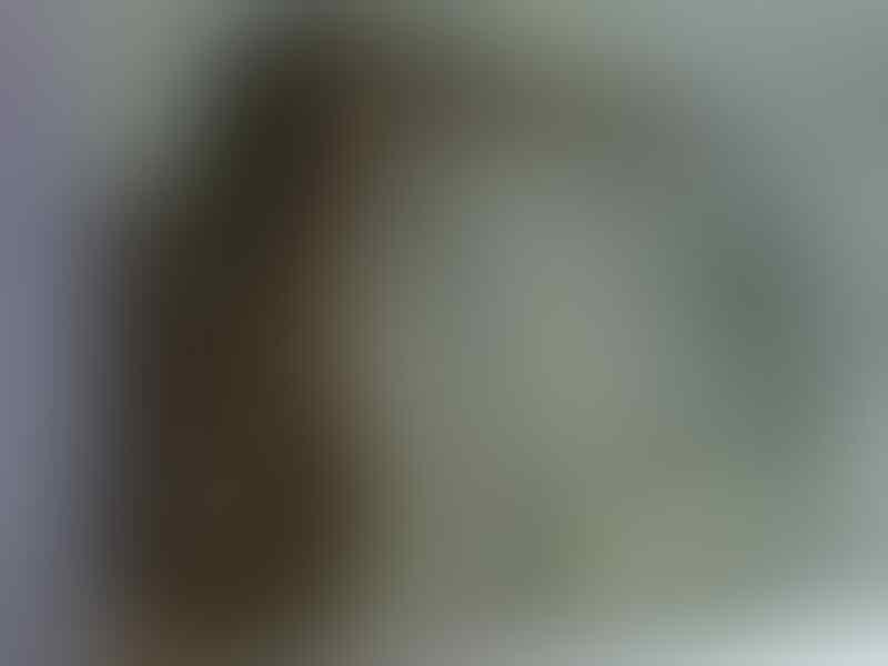jual Pastel Columbian Boa