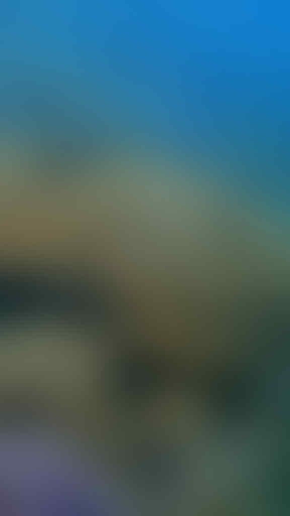 Teluk Kiluan Tak Hanya Lumba-Lumba