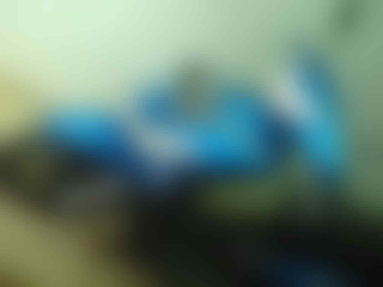 WTS: MOTOR MIO BIRU METALIK - ORISINIL - BANDUNG