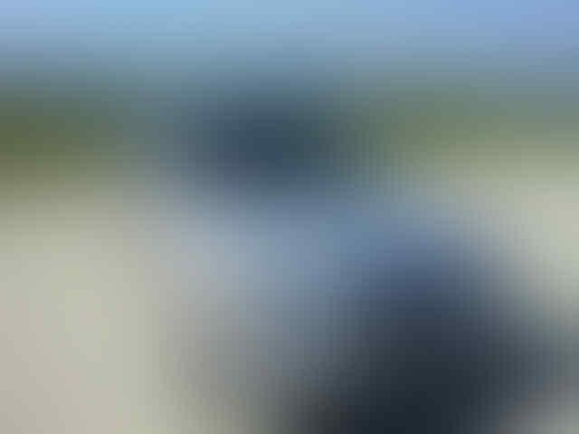 JUAL MERCEDES BENZ E220 MASTER PIECE TH 95 (MT) MULUUUSS..SEXY....!!