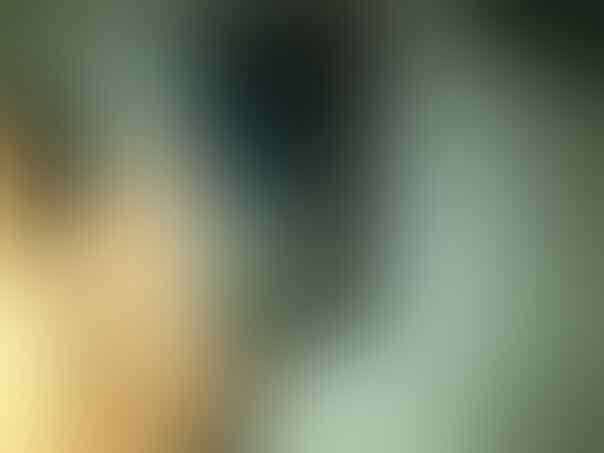 Nokia N96 16gb black jogja