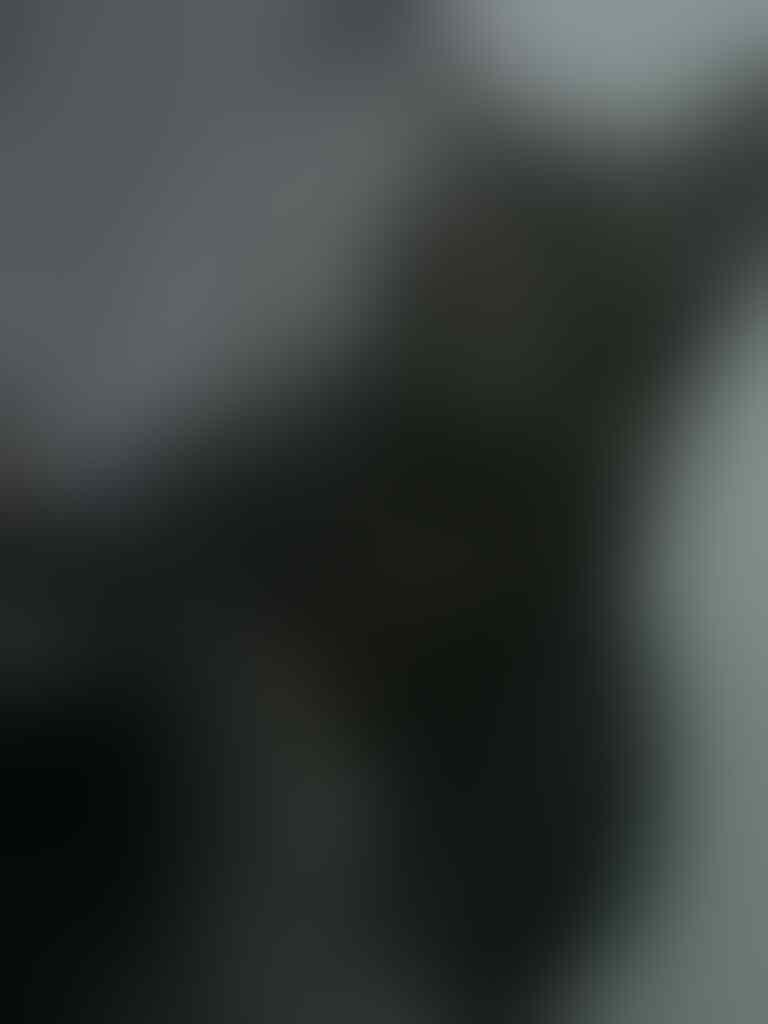 SEMI HIBAH kucing anggora-persia BANDUNG