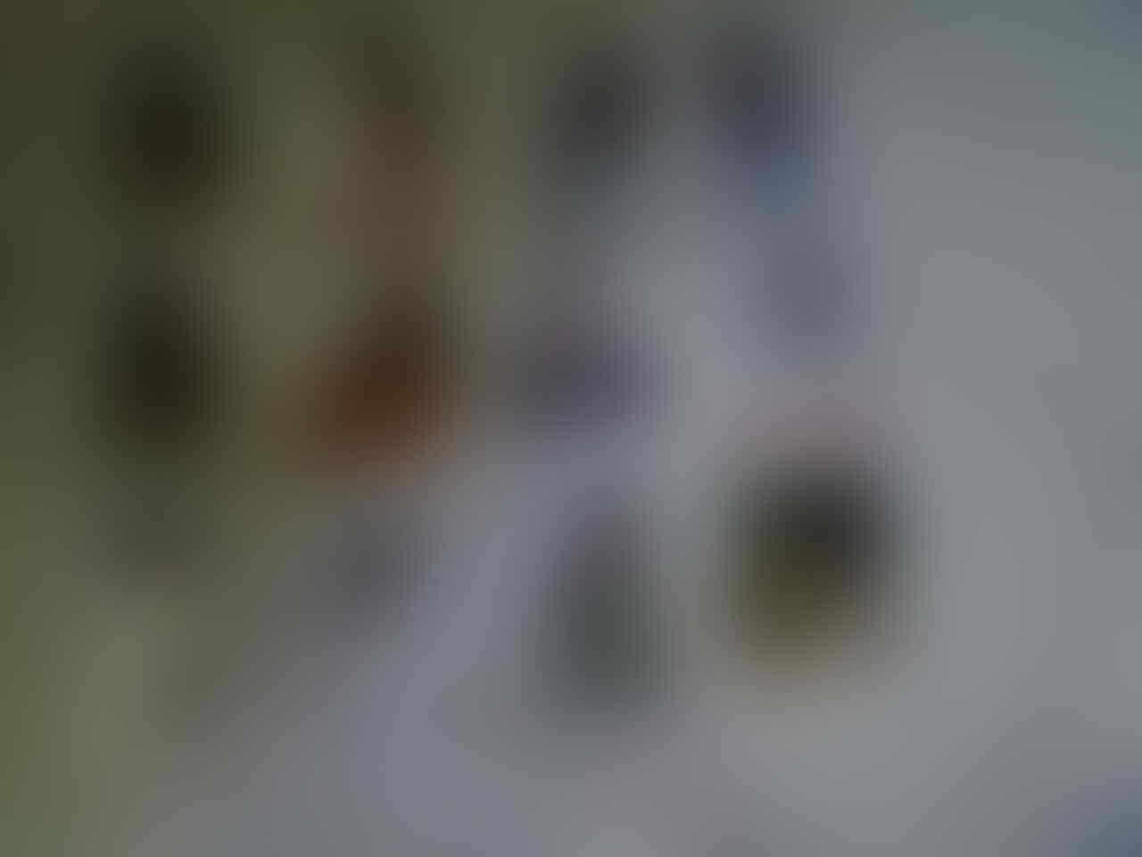WTS: PhotoPack shaniaJKT48!! hampir fullset!!