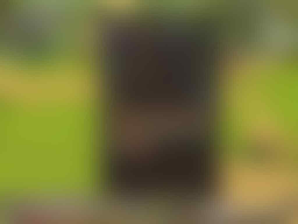 Jual CHAR Heva online [Berseker] polossss
