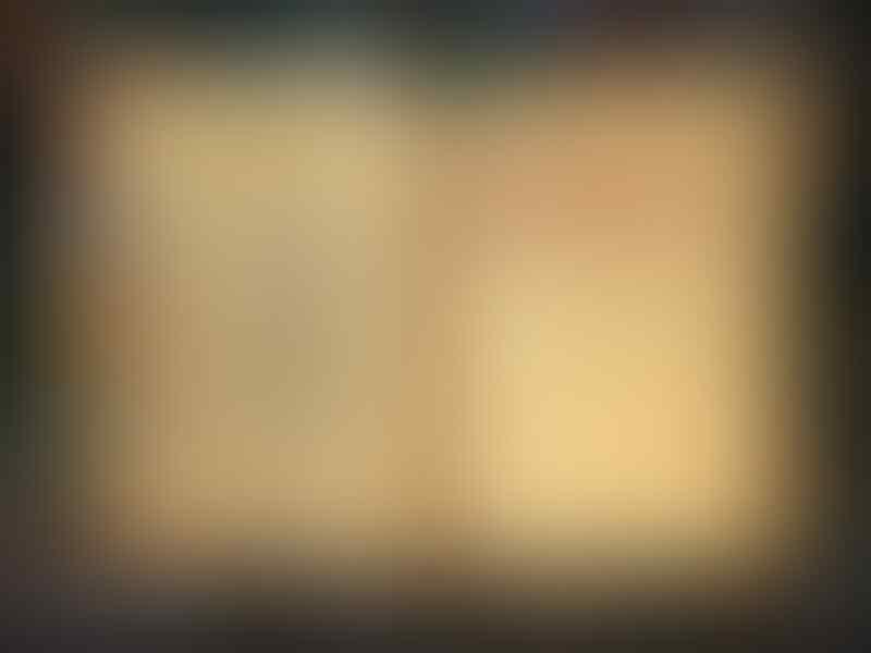 JUAL CHAR ELIGIUM INDONESIA (DRUID-SOUL PUNISHER-LVL 57)