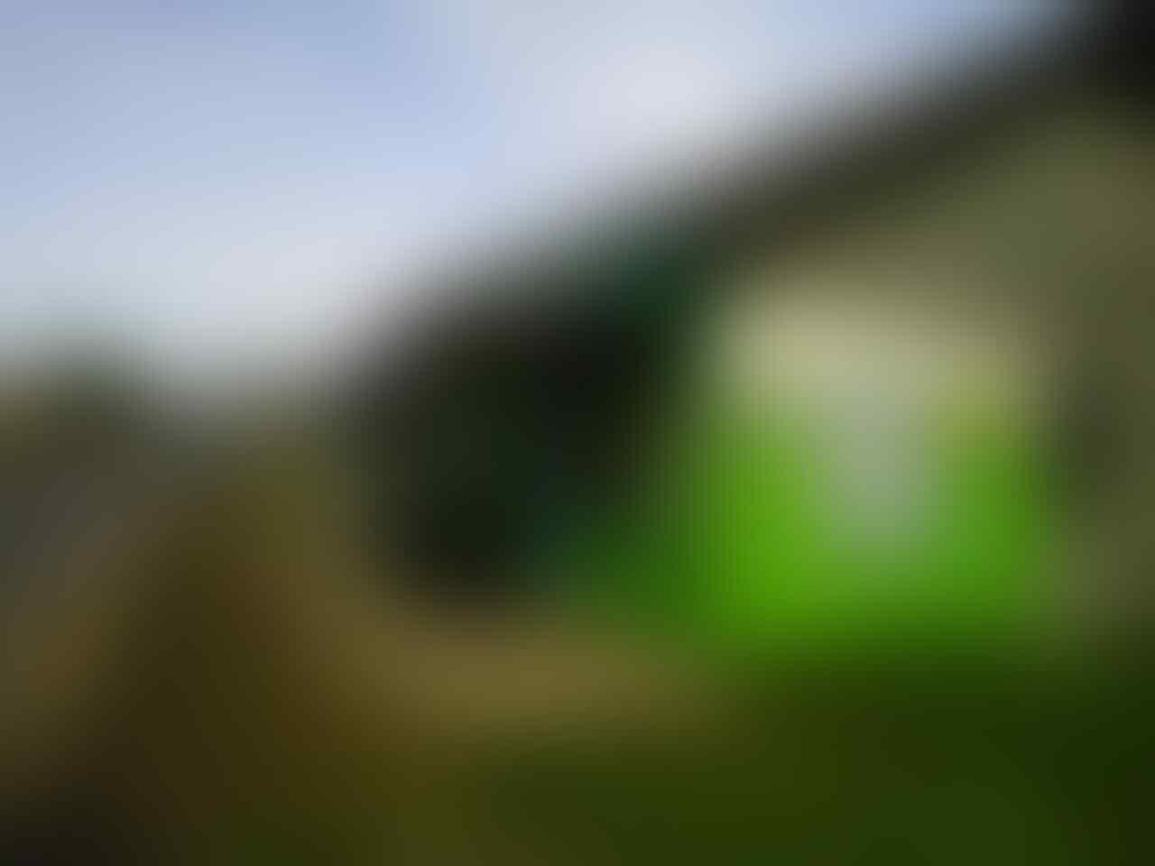 Jual Rumah dan Warung Lokasi Strategis Purwokerto Jawa Tengah