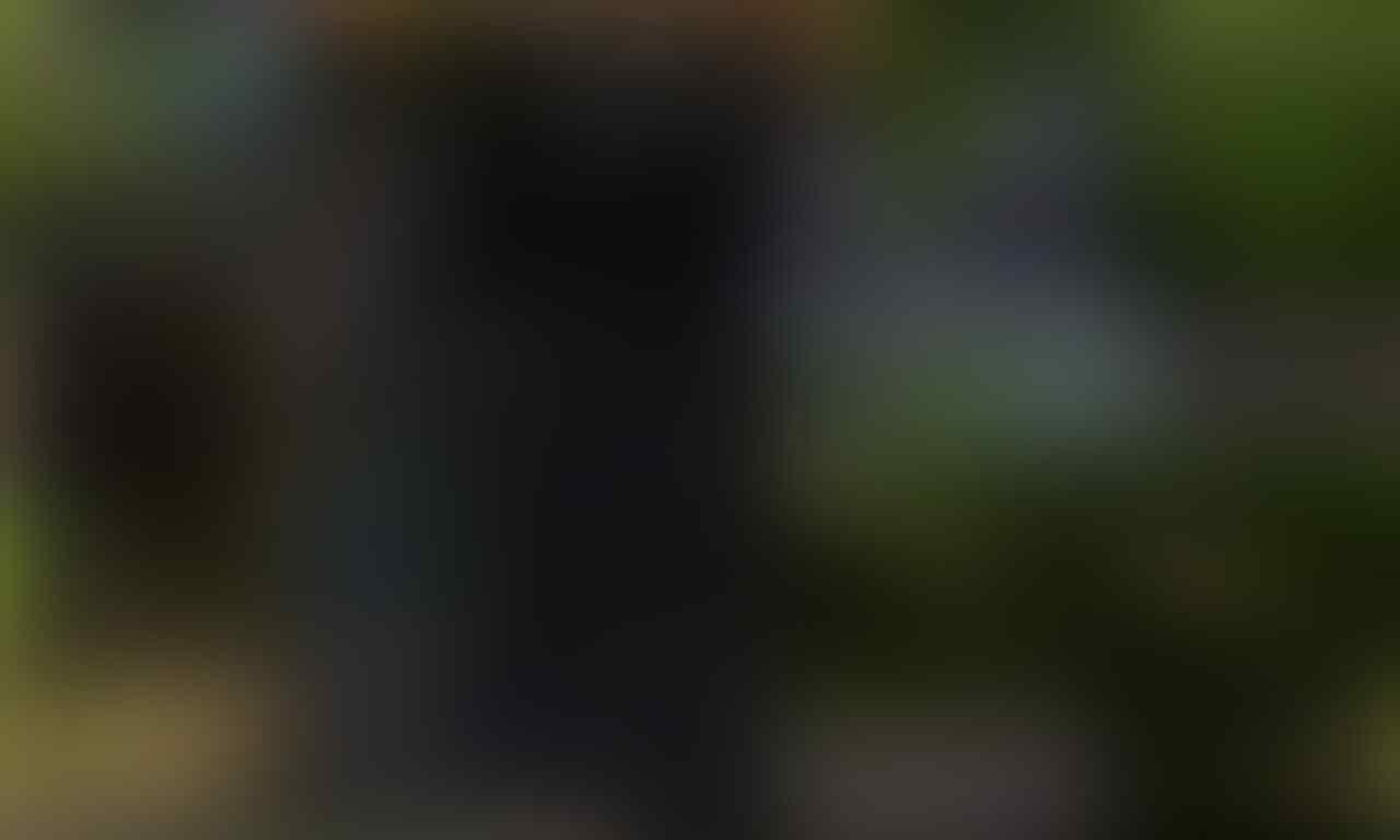 "Di Jual ID Dragon Nest Sea ""SERVER"" -HOLLYWOOD-"