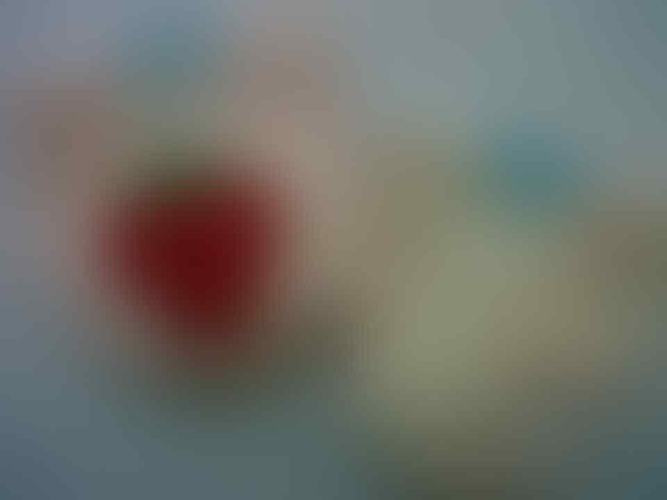 Popok Cuci Ulang (Pokado, Cleubebe, Babyland, dll) Reseller Welcome
