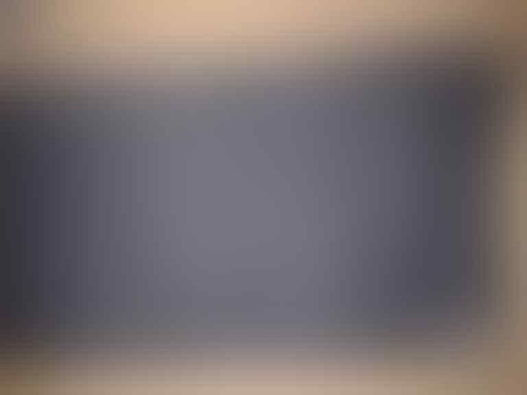 NEW & ORI SHORT PANTS DICKIES 32 MALANG