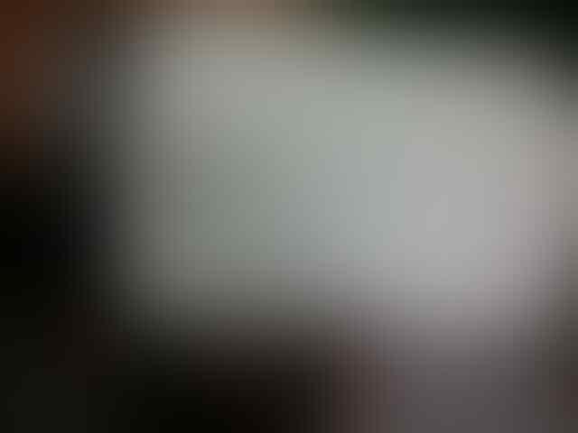 Blackberry Torch 9800 white mulus ex distributor bless