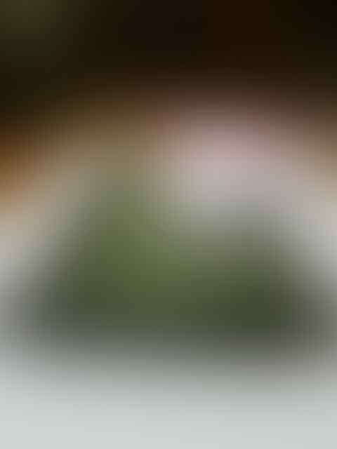 ''''''''== SAMSUNG GALAXY TAB2 P3100 SILVER ( BISA TT ) =='''''''''