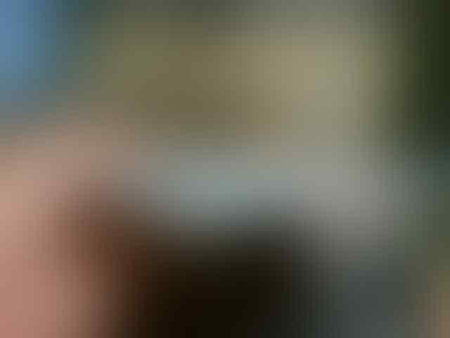 IPAD 2 3G WIFI 16 GIGA PUTIH KINYIS -KINYIS Masih Garansi sampai Februari 2013