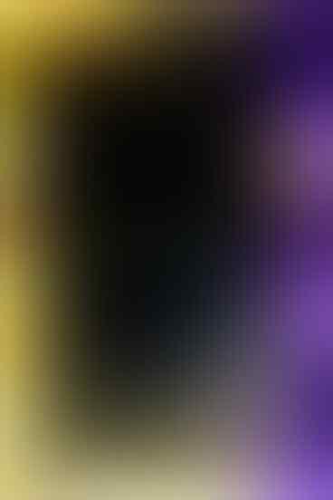 Blackberry Storm2 / Odyn Second Mulus. (Bisa TT)