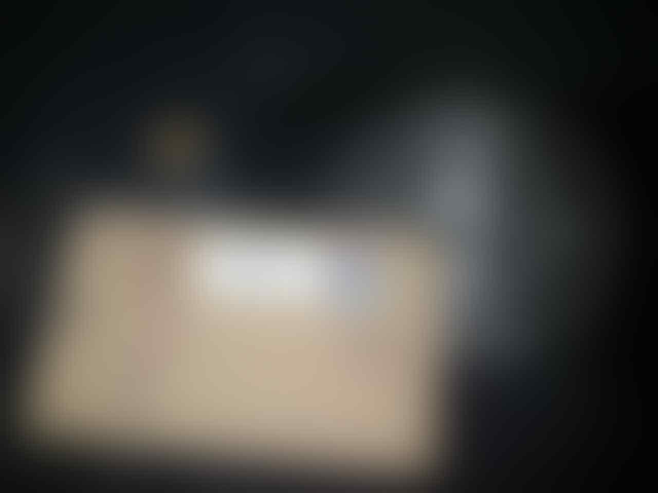 Celana Pendek Petersaysdenim (PSD) TREMOLO ARM BARU gress DIJAMIN ASLI size 26