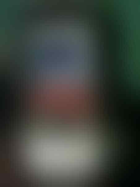 BLACKBERRY TORCH 9800 LENGKAP MURAH NEGO