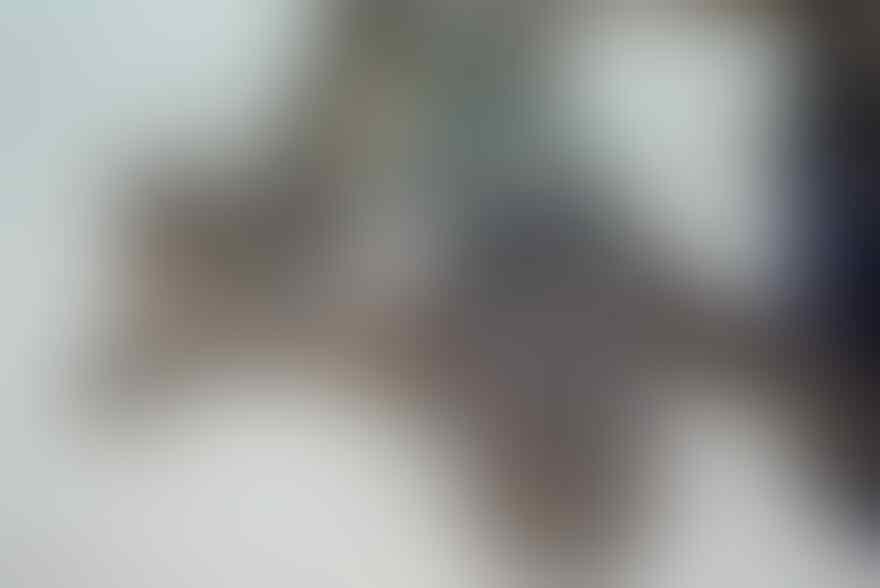 kumpulan foto-foto ekstrim dan mengerikan(yg gak kuat jg liat)