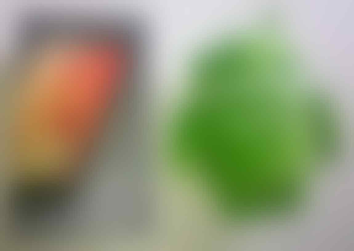 [WAITING LOUNGE] Google Nexus 4, the first LG Nexus Phone aka LG - E960